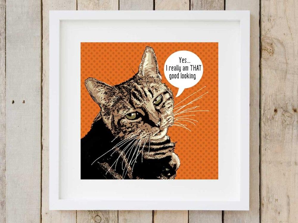 tabby_cat-2