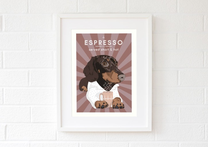 Espresso_doxie_brown_2
