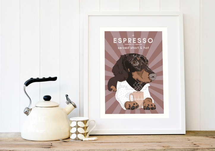 Espresso_doxie_brown_4